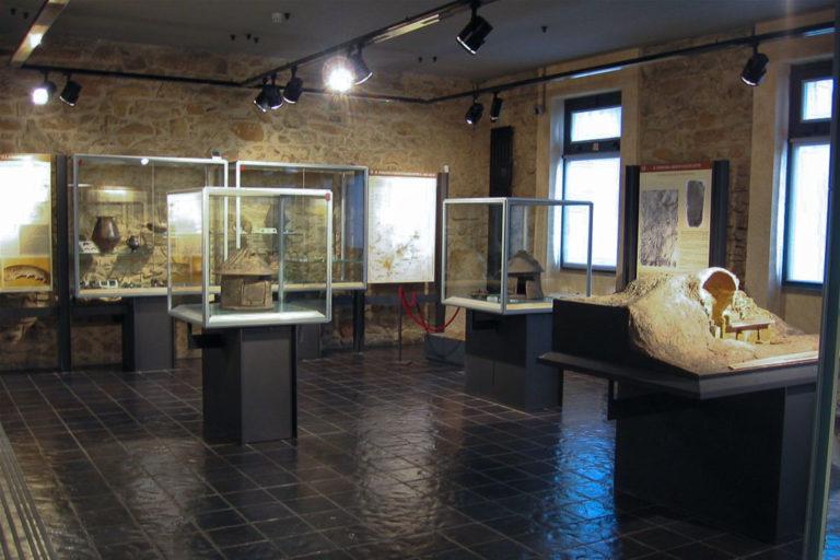 Museo Falchi